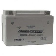 Mini-Lite replacement battery